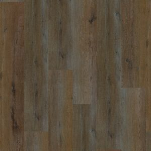 Intuition Oak Brown