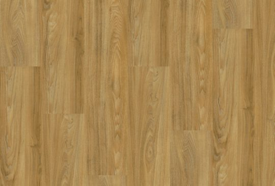 DESIGNline 400 Summer Oak Golden lepená